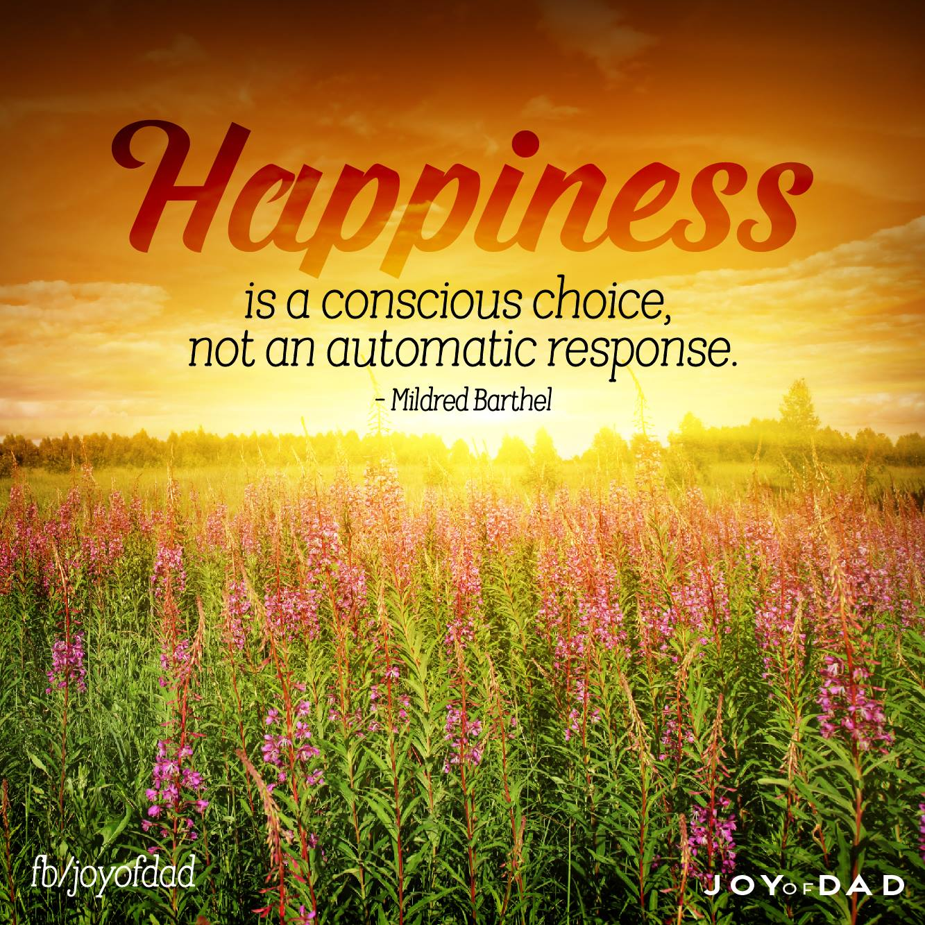 happinesschoice